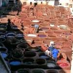 Curtiduría Chouwara en Fez