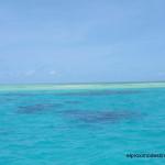 Gran Barrera de Coral desde Cairns