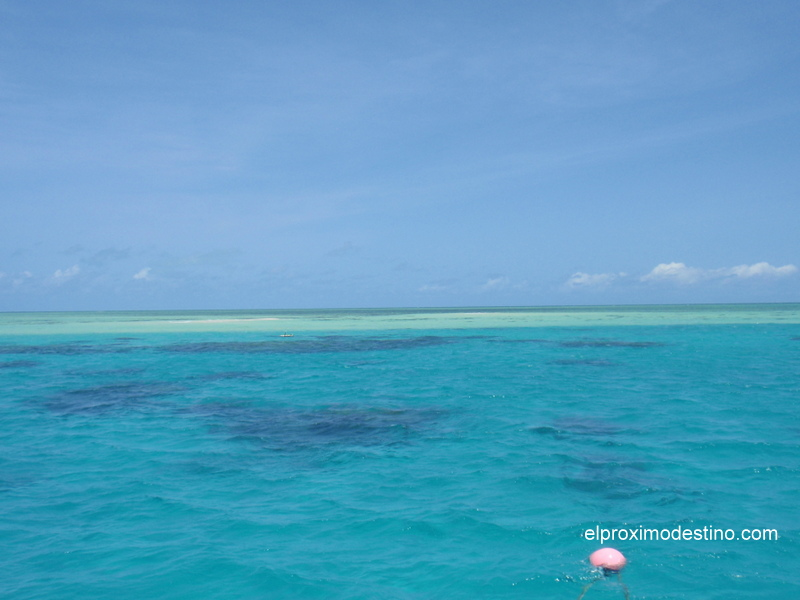 Barrera Coral