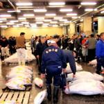 La Lonja de Tsukiji en Tokyo
