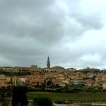 Briones y el Museo del Vino