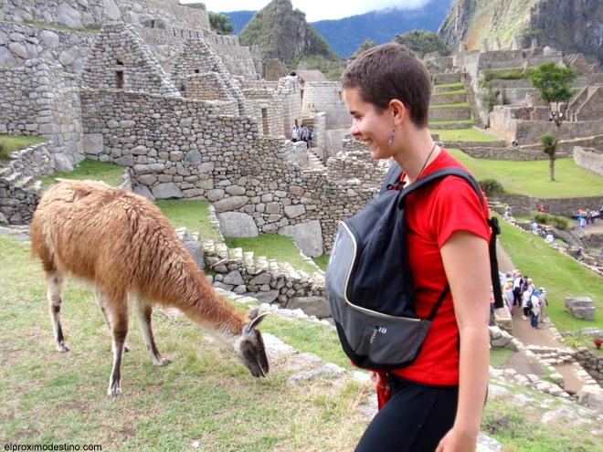 Meritxell haciendo amigos en Machu Picchu :)