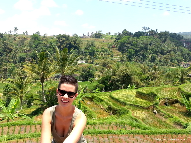 Arrozales de Jati Luwih, Bali