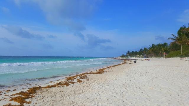 Caribe Maya