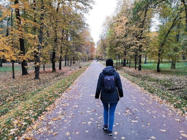 Parque inferior en Peterhof