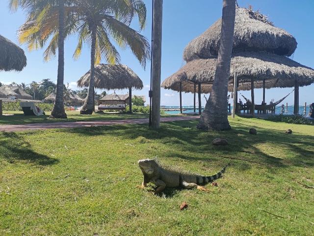 mejor hotel de Isla Múcura