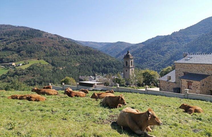 que ver en la ruta del agua en asturias